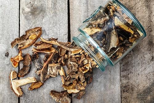 Torkad svamp är härligt att ta fram under vintern och göra en god soppa på.