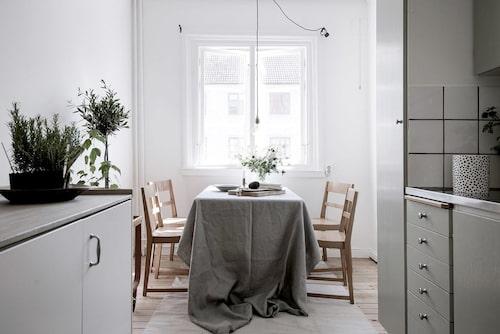 Ett kök med noga utvalda färger för känslan av helhet.