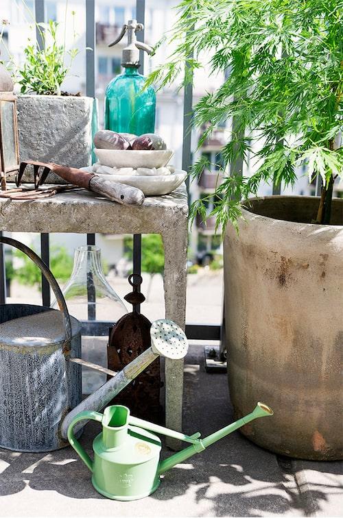 Obligatorisk på Elinas terrass: bänk för plantering och omvårdnad av växter.