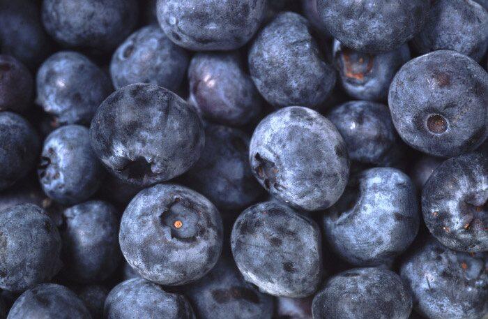 Landets blåbärsproduktion kommer landa på 550milj. kg. Vilket är långt mer än normalt.