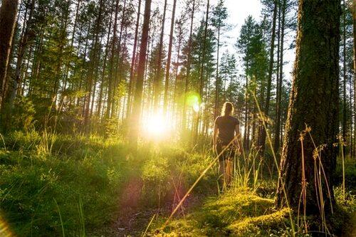 Lyssna på kroppen. Vad behöver du för att få mer energi och livsglädje? Det kan vara allt från en rejäl vila, prata med någon, ett hårt spinningpass eller en promenad i skogen.
