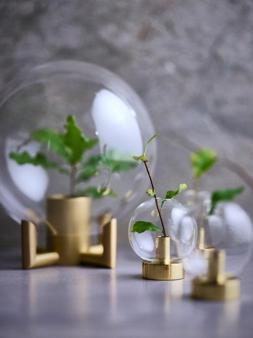 Munblåst glaskupol där mässingsfoten även den är en vas, Orb, 1 649 kr, Klong/Posh living, små glaskupoler Orbis, lillasyster till Orb, 345 kr/st, Klong.