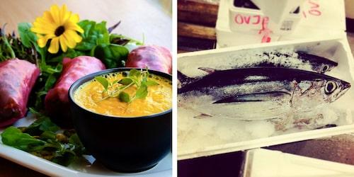 Vi älskar bilderna från@kivikslillaraa på Instagram. 8 kilo tonfisk på Skillinge fisk @nyarokeriet.