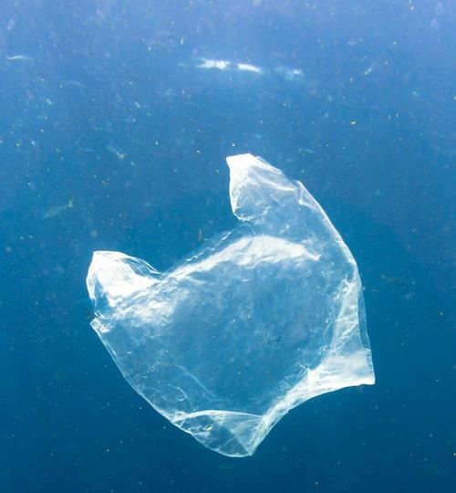 Att samla ihop marint avfall och skapa ny Ocean plastic är ett av sätten som Parley for the Oceans vill rädda haven på.
