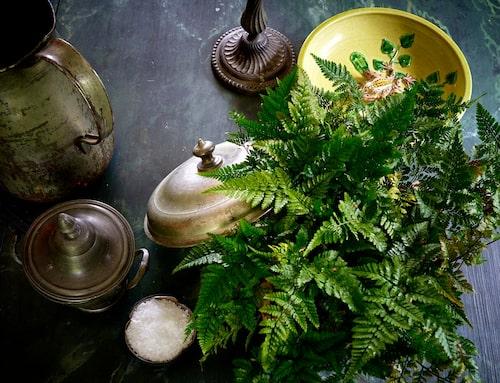Jugendinspirerat gult keramikfat med groda, från keramiker i Verona, och vackra former i plåt- och tennföremål.