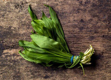 Ramslök är en bladgrönsak som växer i halvskuggiga lundar.