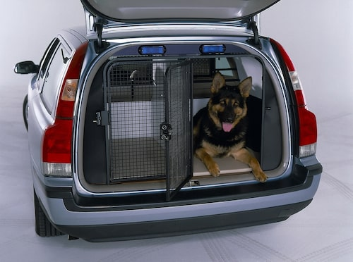 Civil polisbil med polishund.