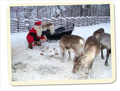 Träffa jultomten!