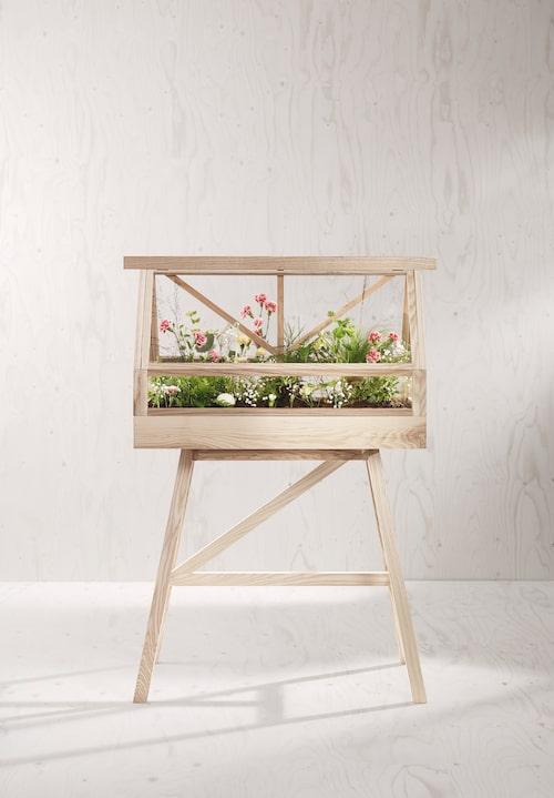 Inomhusträdgård på fyra ben. Växthuset Greenhouse i trä är formgivet av Atelier 2+, 8500kr, Designhouse Stockholm.