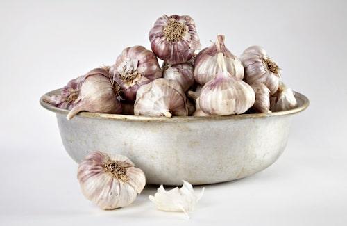 Silvervitlök har glänsande skal. Det finns sorter med vitare skal eller rosa strimmor.