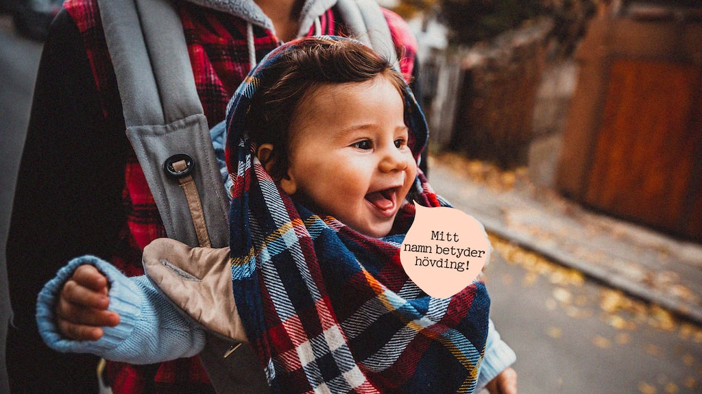 Fornnordiska namn till bebisen – vilket väljer du?