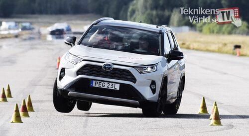 Bild från vårt älgtest med nya Toyota RAV4 förra året.