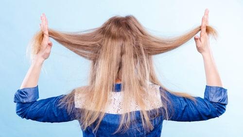 Torrt och risigt hår, ofta ett tecken på underproduktion i sköldkörteln.