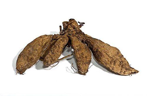 Dahlians knölar övervintras i torv, spån eller sand, och förodlas till våren.
