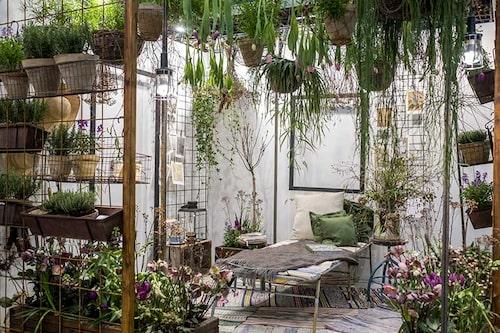 Hängande växter i taket på balkongen ökar på lummigheten.