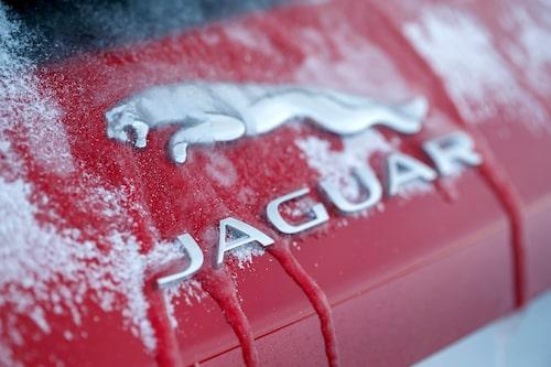 Dåligt med försäljningsställen i Sverige innebär att få uppe i norr får möjlighet att provköra Jaguar.
