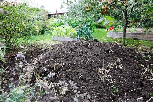 Att anlägga en stuka kräver ingen ingenjörskunskap eller dyra material. Ett utomhuskylskåp för grönsaker.