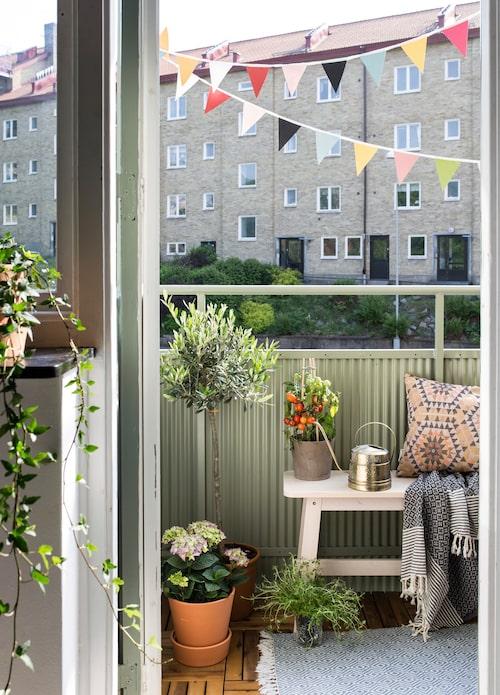 Ovan: Balkonglycka under vimplarna med växter, träbänk från Ikea och vattenkanna från loppis. Kudde och pläd från House of Rym/Koja sho