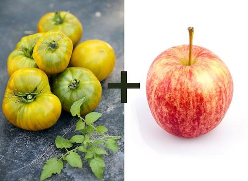 Äpplen utsöndrar etylen som gör att tomater mognar snabbare.