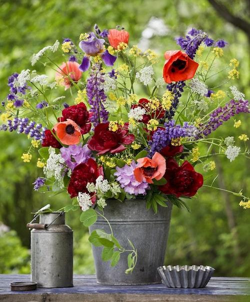 Sju sorters blommor, och några extra för säkerhets skull. Foto: Pernilla Hed.