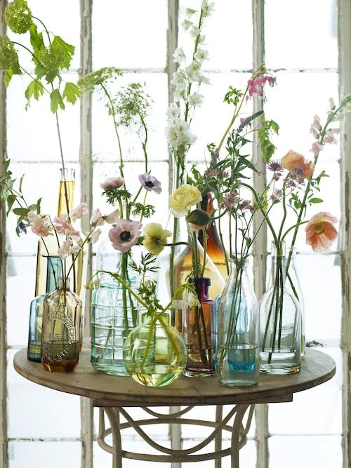 Vaser i färgklang med kronbladen. Foto: Martin Cederblad Arr: Helene Holmstedt