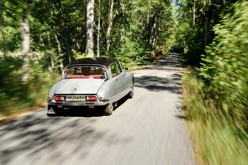 Stötfångarnas knuffhorn av gummi är en typisk fransk parkeringsfiness.