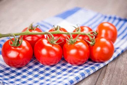 Låt tomaterna eftermogna på köksbordet. Inget solljus behövs.