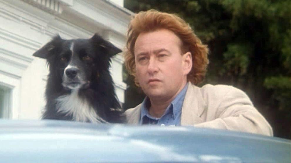 Hunden Turbo och Snoken, Anders Grip.
