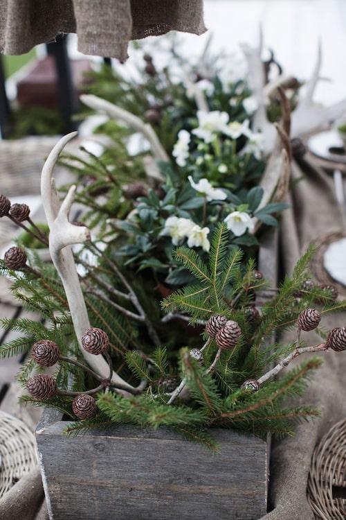 Naturliga dekorationer.