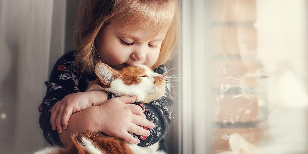 1-åringen rivs, bits och nyper mamman – och drar katterna i tassar och päls. Varför? Och vad gör man? Barnpsykologen svarar.
