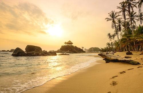 I Tayrona park i östra Colombia möts djungeln och Karibiska havet.