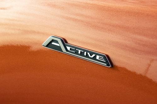 Typsnitt och utseende på det där emblemet – det ser mer ut som Citroën än Ford.