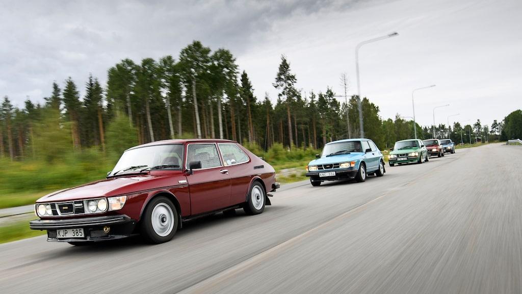 En armada av Saab 99 Turbo på rull. En syn som många blir glada av och de yngre får googla för att fatta vad det var de såg.