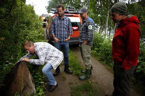 Mickes försök att flytta på  en stor sten går om intet.  Danny, Harry och Lapp-Jonte tittar på, med händerna i fickorna.