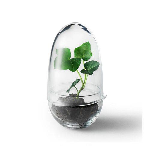 Mini-växthus från Design House Stockholm. Klicka på bilden för att komma direkt till växthuset.