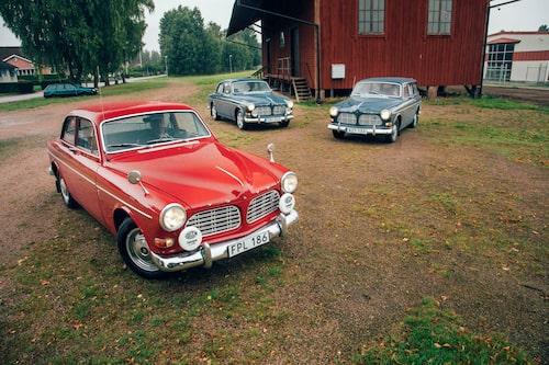 Tre fina Amazoner på tur någonstans utanför Hallsjö på gränsen mellan Jönköpings och Kronobergs län.