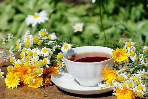 Ätliga blommor kan användas i örtteer, här klassiker som kamomill och ringblomma.
