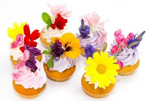 Var källkritisk! Ibland är inte stylister noga med att kolla upp om det verkligen är en ätlig blomma de har på bilden.