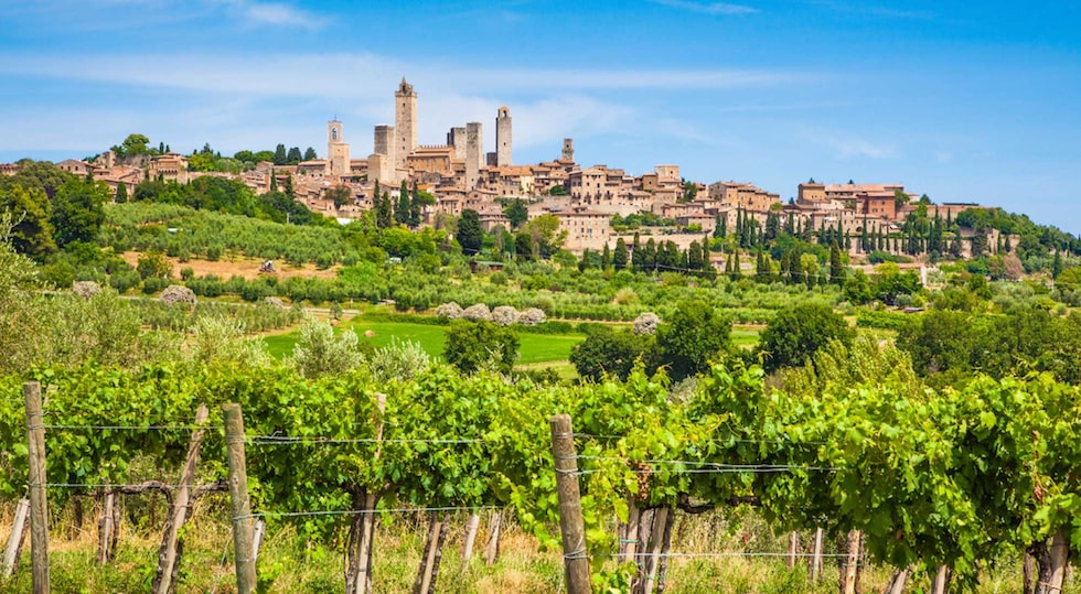 Utsikt över vacker vingård i Toscana, Italien