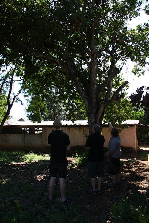 Vi besökte Antons gamla lågstadieskola i Nzega. Här instruerar han var träkojan låg.