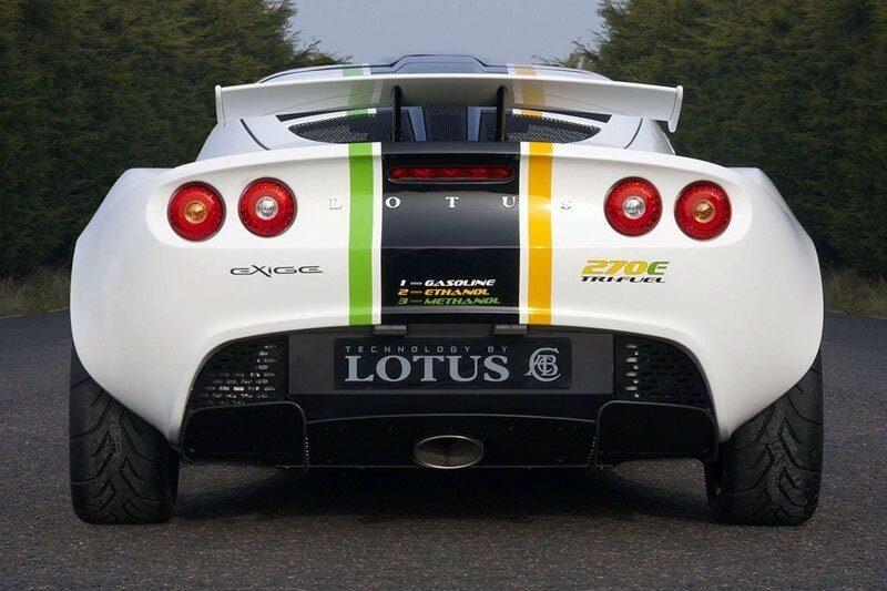 080813-lotus-omnivore