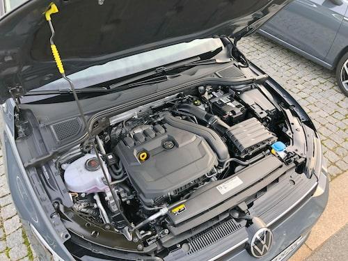 Endast ett dieselalternativ tas till Sverige. Bland bensinarna finns en uppsjö.