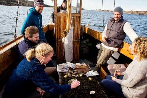 I Grebbestad, Bohuslän, anordnas ostronsafari där du får lära dig allt om havets läckerheter.