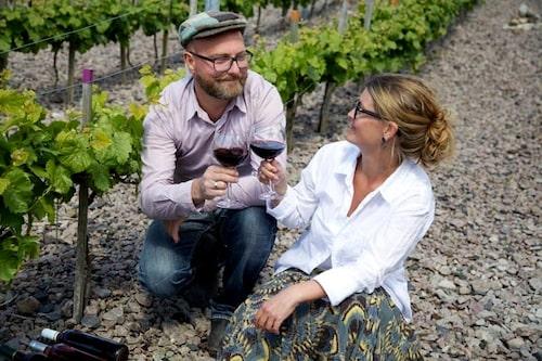 På Vejby vingård bjuds det på Sverigeproducerat rödtjut.