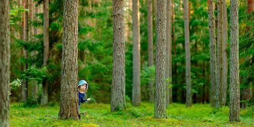 Om man vet hur man kan minska sitt klimatavtryck blir man, genom sitt beteende, en förebild som förmedlar att vi människor faktiskt kan göra skillnad, säger barnpsykolog Malin Bergström.
