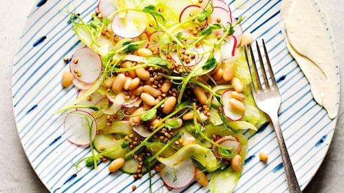 Recept på äppel-, bön- och bovetesallad.