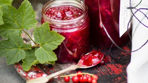 Recept på kryddig rödvinbärssylt.
