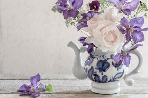 Välja klematis och rosor som passar tillsammans handlar inte enbart om utseende.