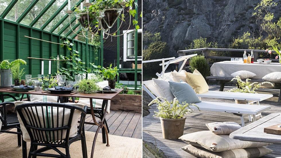 Förgyll uteplatsen och balkongen med växter i vackra krukor.