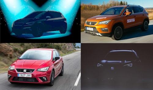 Arona, Ateca, Ibiza och den Kodiak-baserade stor-suven – här kan du jämföra bilarna.